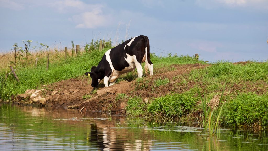 boete controle fosfaatrechten